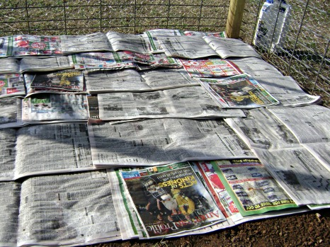 Layer on newspaper